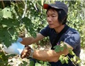 專訪中山酒協顧問講師譚永蕃:將葡萄酒文化融入大眾生活